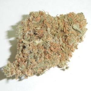 OG Kush Marijuana Strain Online